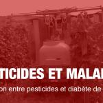 Relation entre pesticides et diabète de type 2