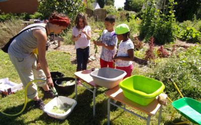 Projet « Un jardin, une cuisine »